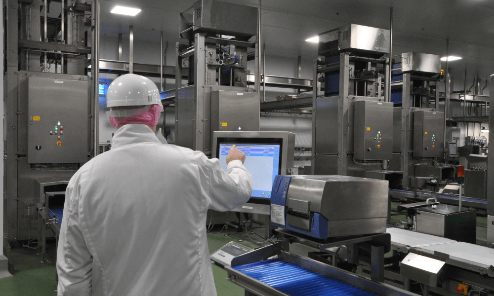 Image of man working in food processing factory reviewing SI