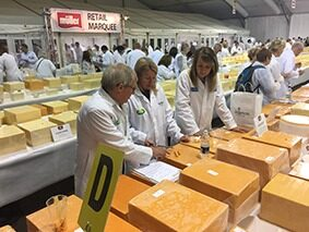 Judging at the International Cheese Show in Nantwich