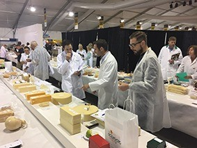 grading cheese at the nantwich show